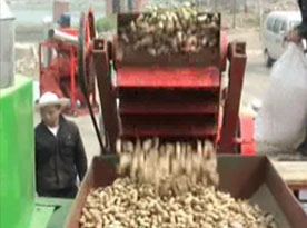peanut shelling equipment
